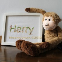 Harry hand embroidery - Misericordia 2012
